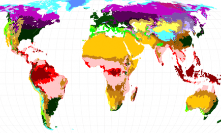 Map of climate predictions